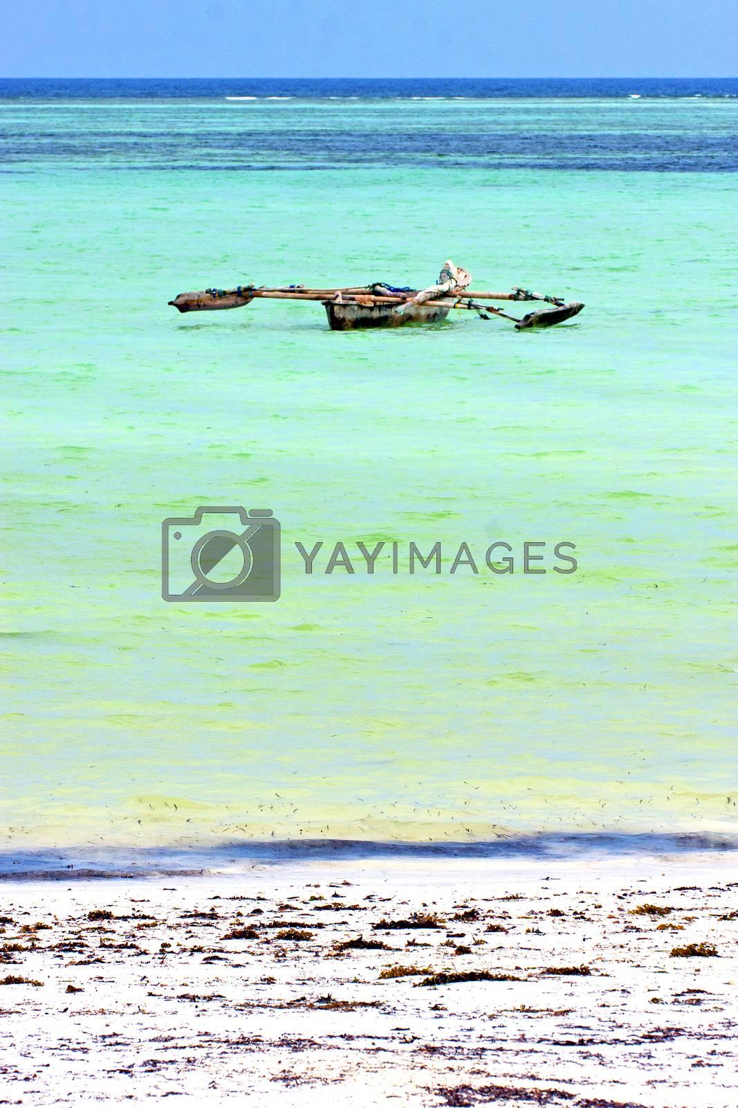 beach   in zanzibar   indian     sand isle  sky  and sailing by lkpro