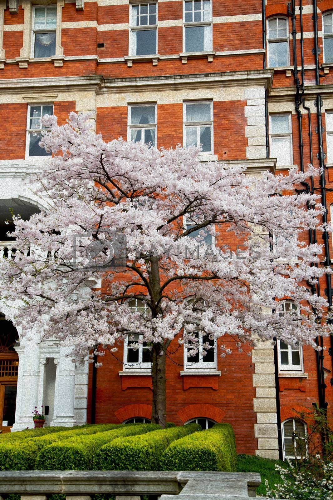 tree  window in europe london  red brick wall     and      histo by lkpro
