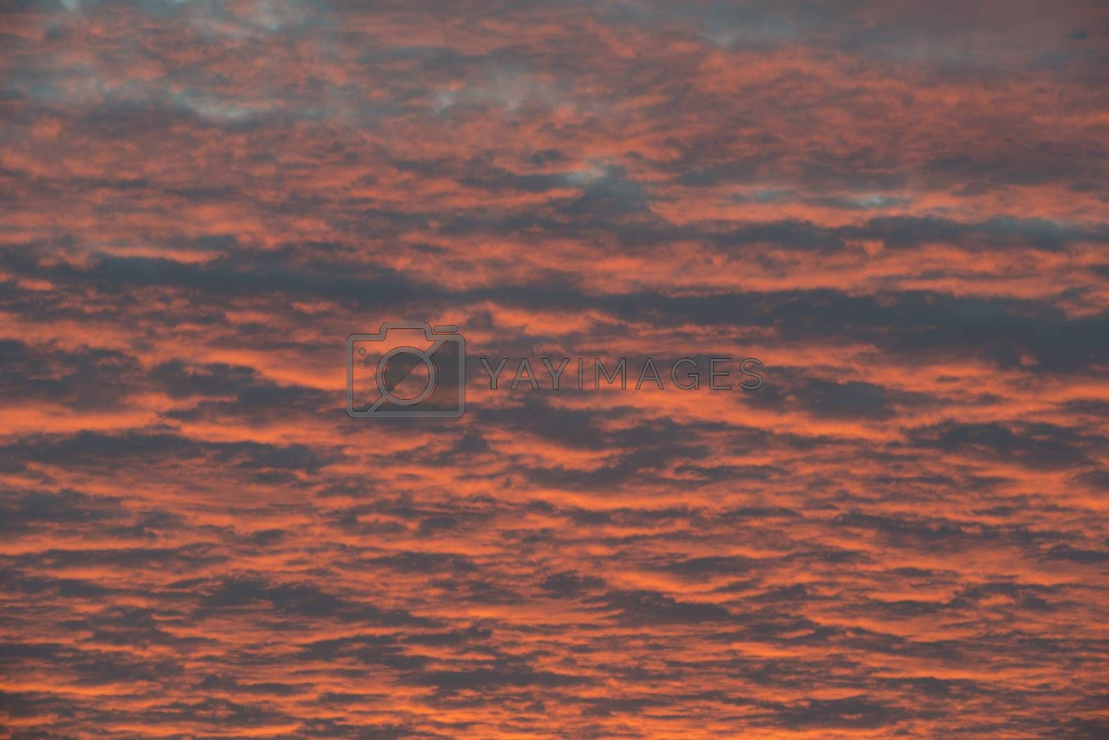 Abstract red and orange colored skies during sunrise in the Netherlands