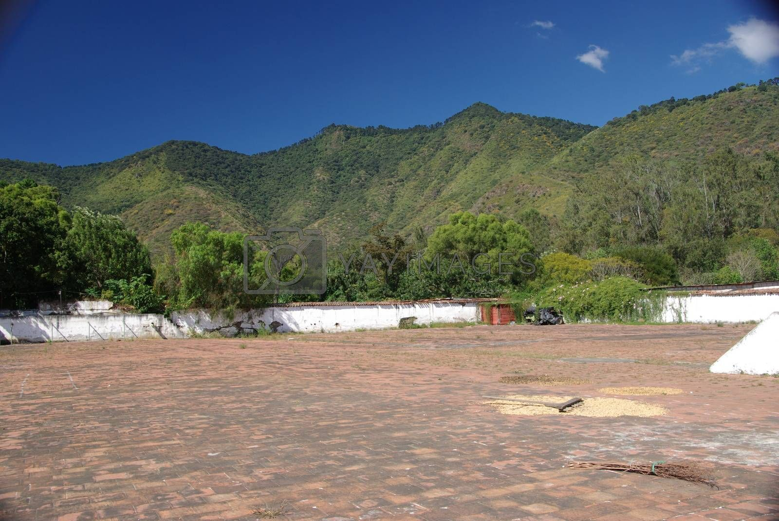 Royalty free image of Landscape in Guatemala by pascalou95