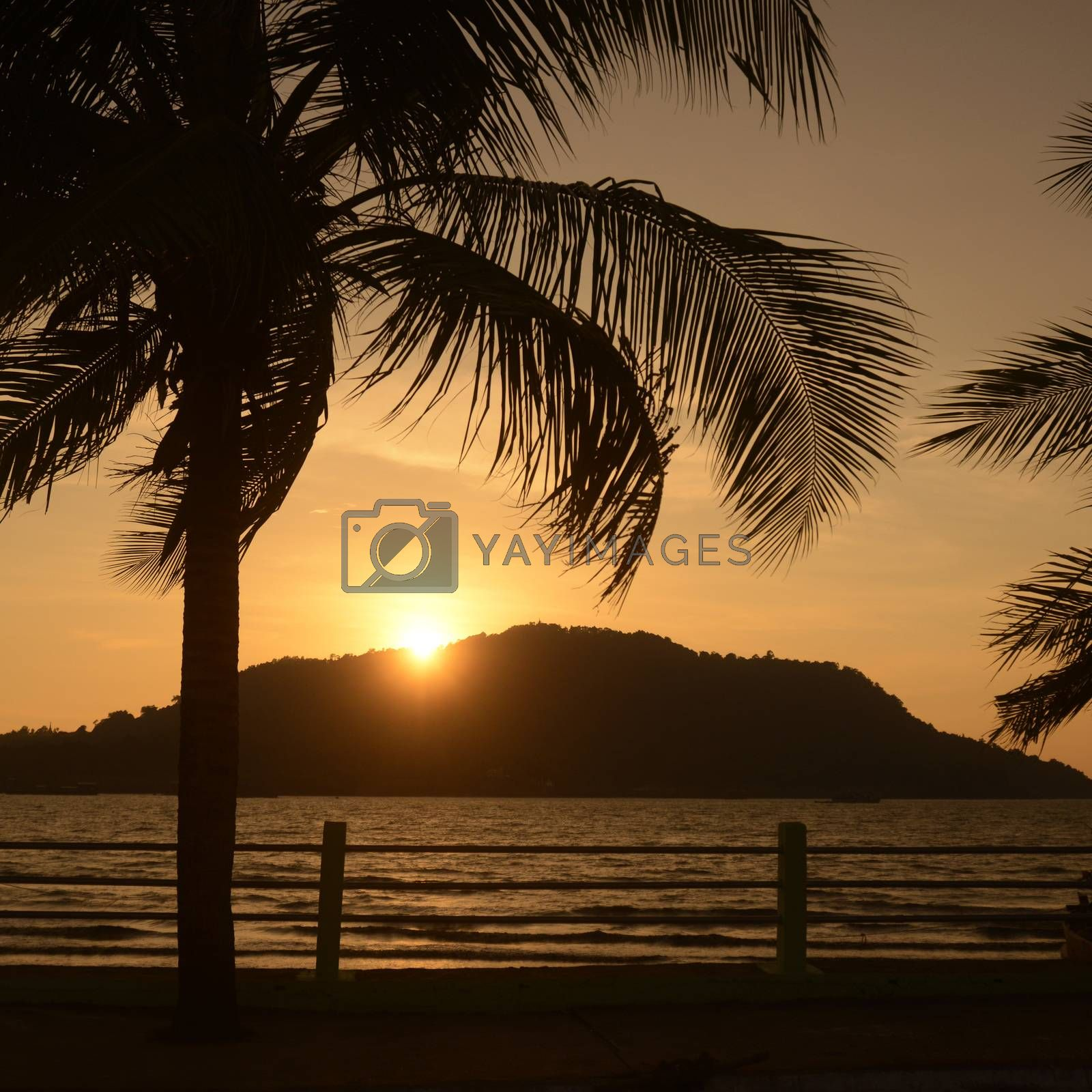 the sunset at the Stand road at the coast of the Andaman sea of Myeik in the south in Myanmar in Southeastasia.
