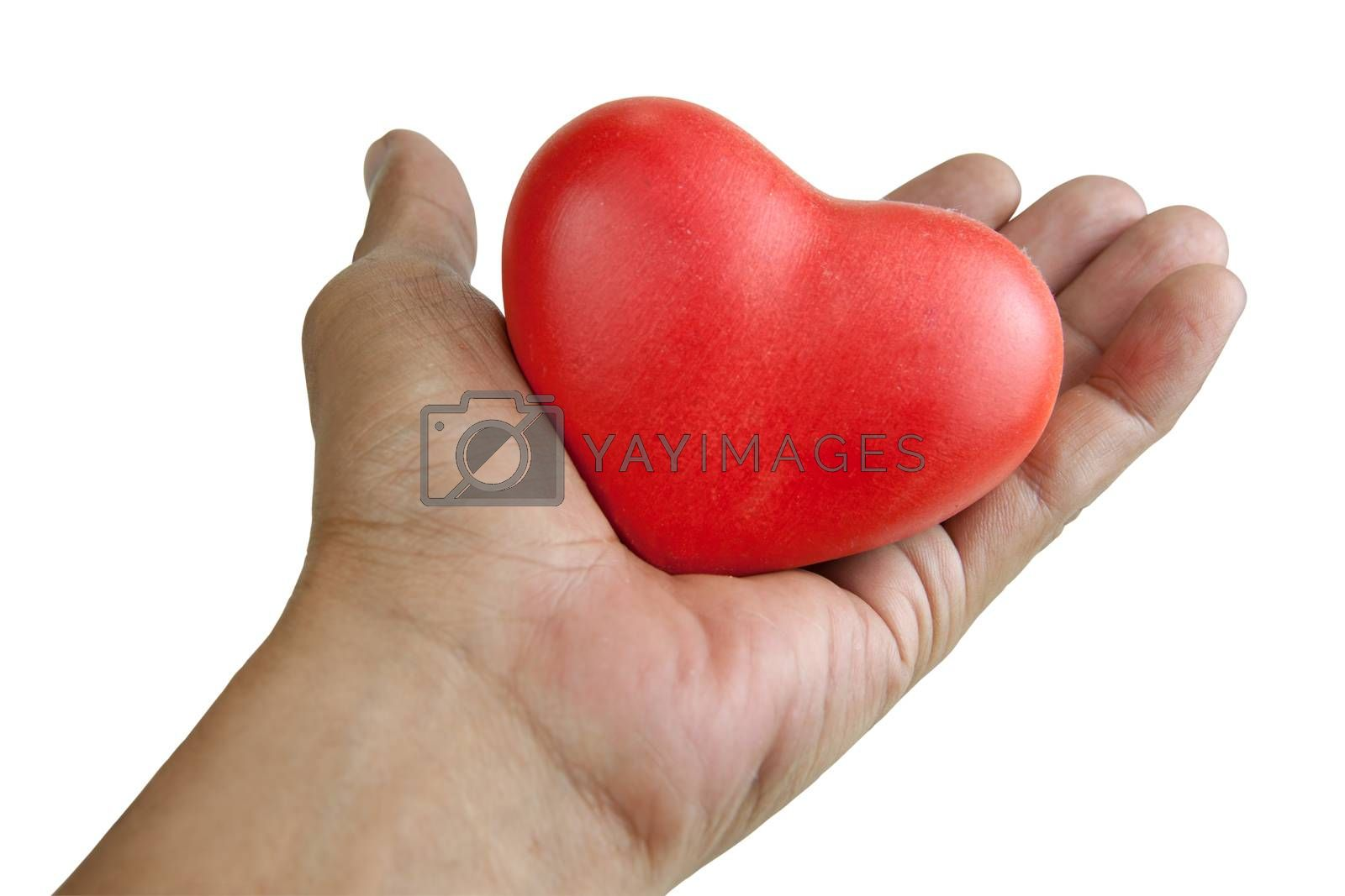 handle with heart care. Hand holding a red heart. isolated white background with clipping Paths