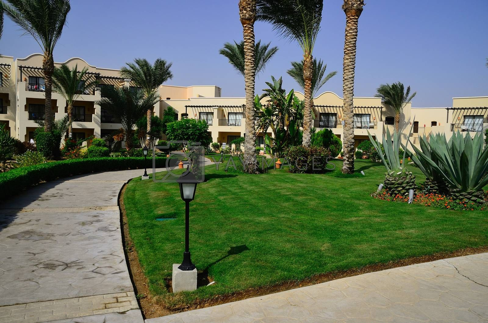 beautiful green hotel complex with a garden in egypt holidays