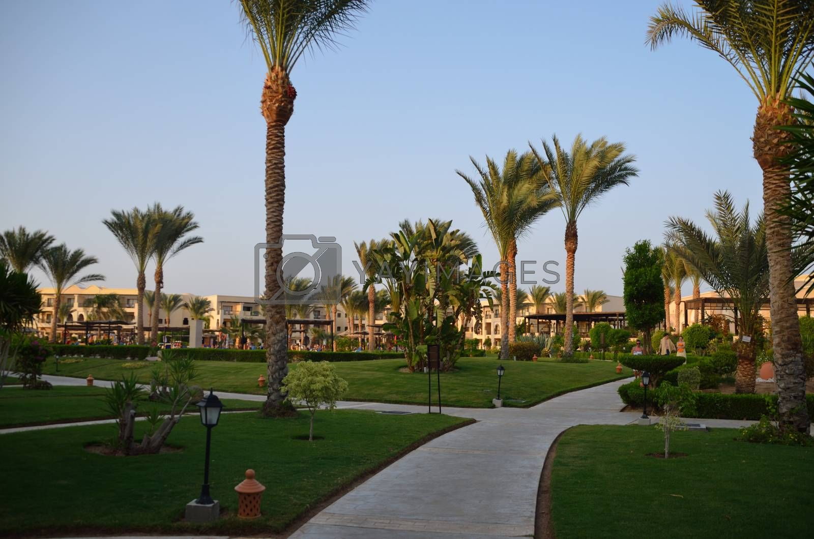 beautiful green kept hotel complex in holidays in Egypt