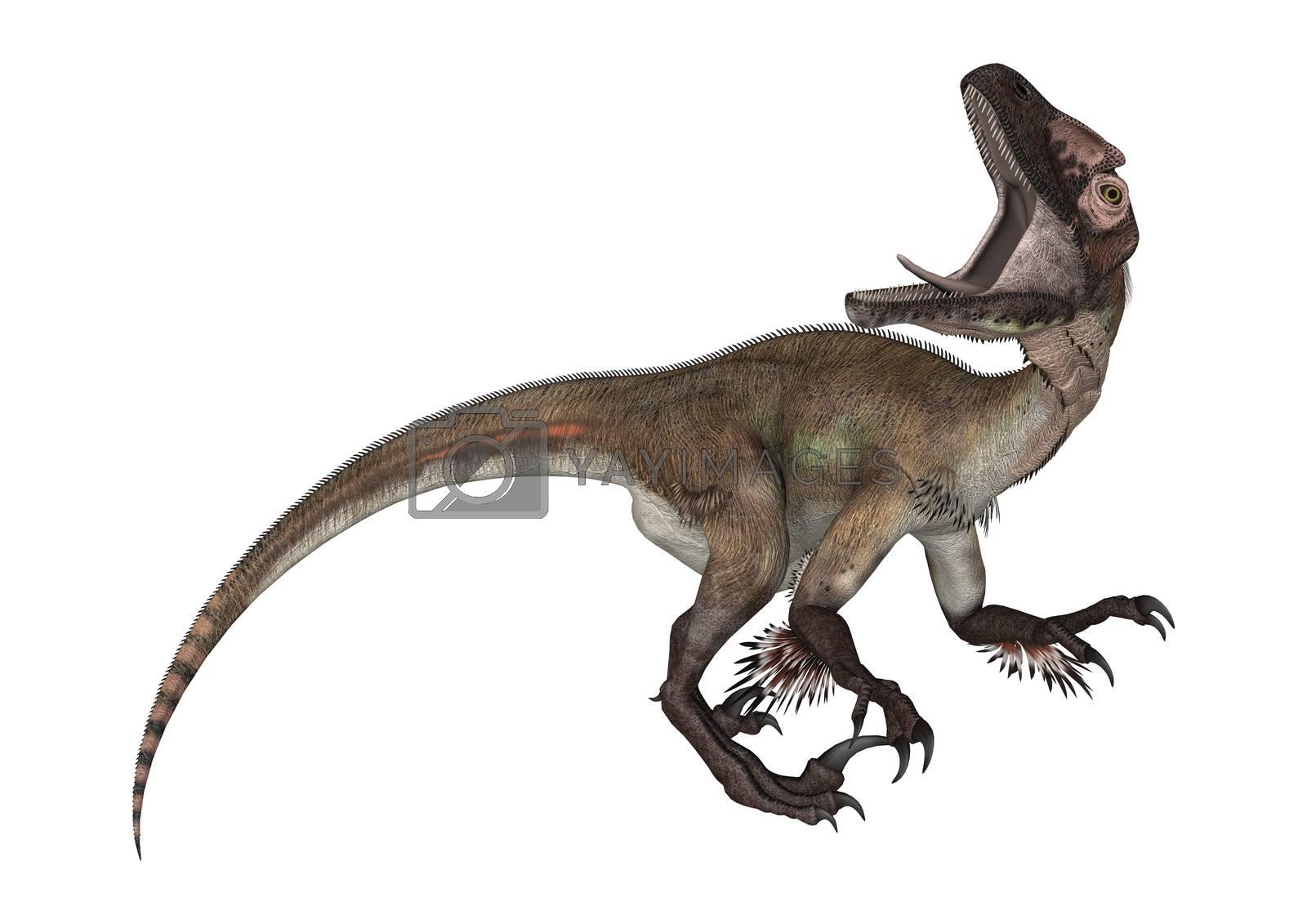3D digital render of a dinosaur utahraptor isolated on white background