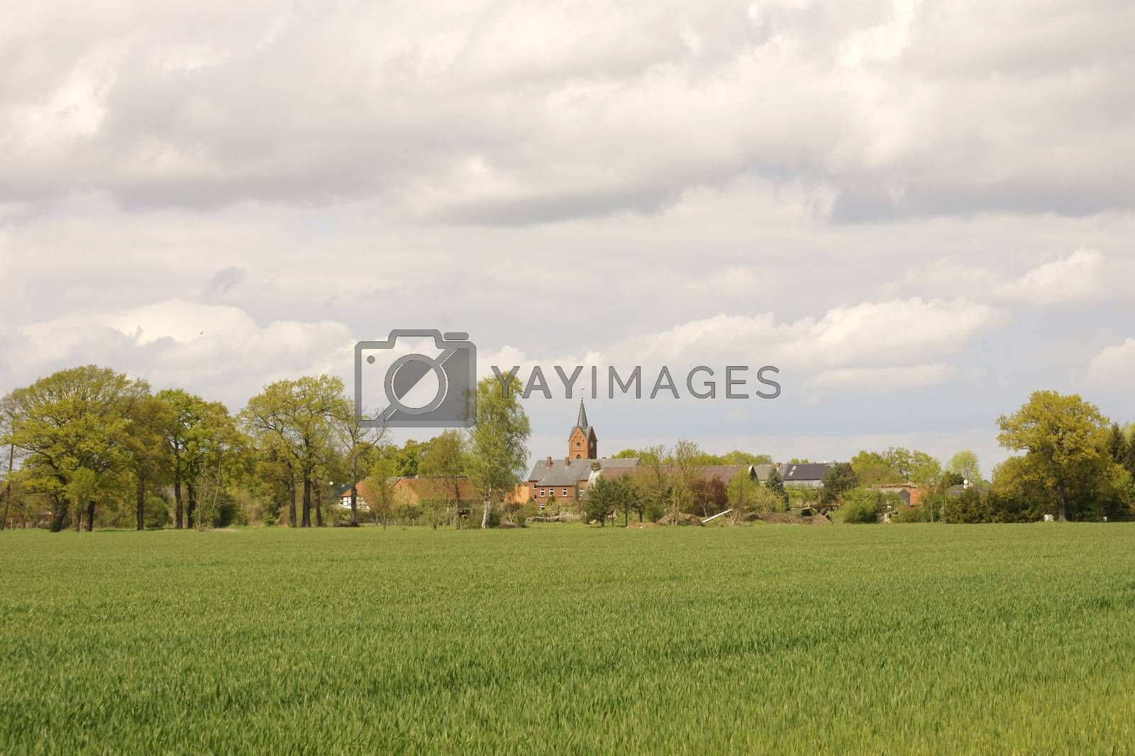 A village with a church and farms in the distance behind a row of trees and fields.