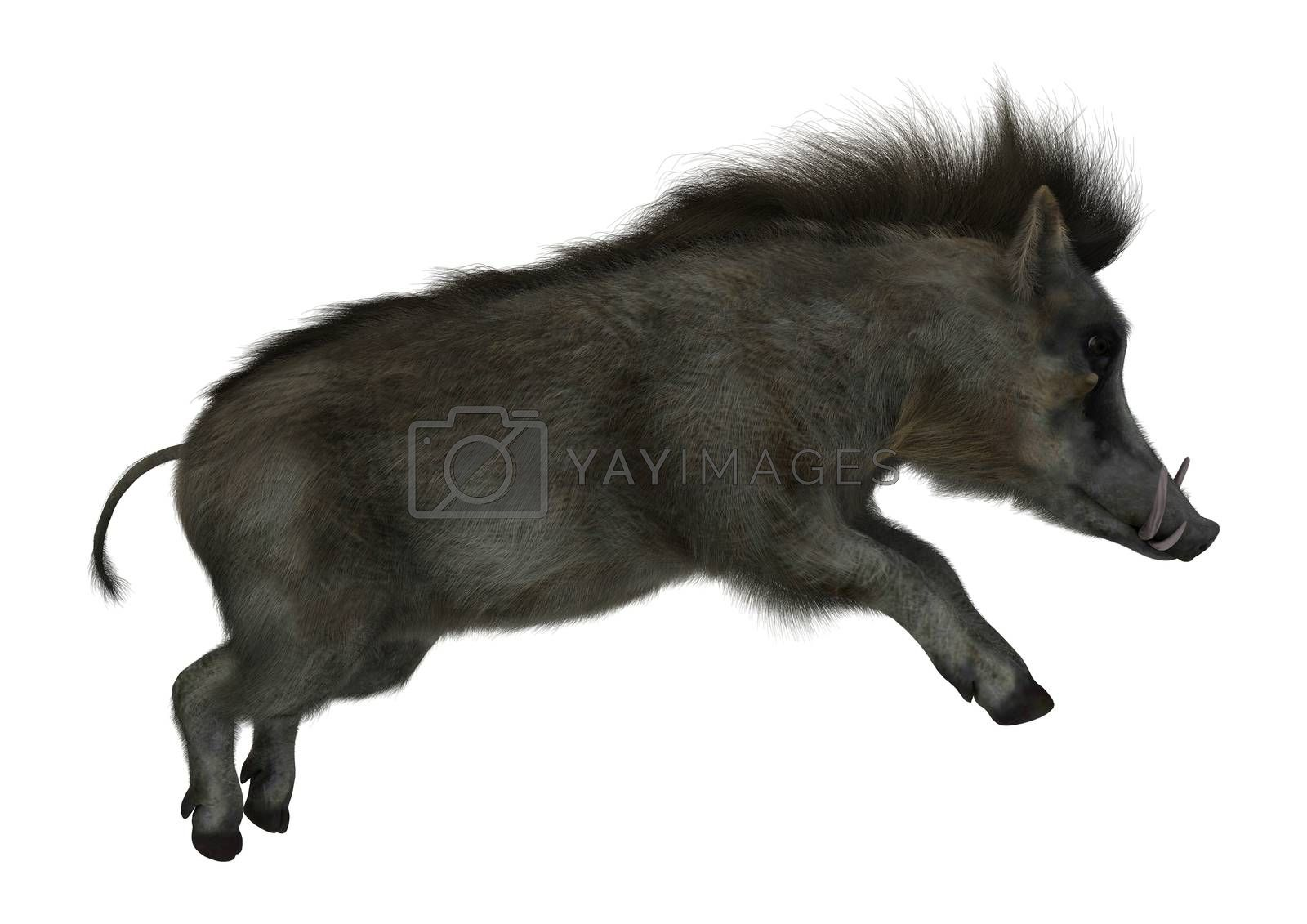 3D digital render of a warthog jumping isolated on white background