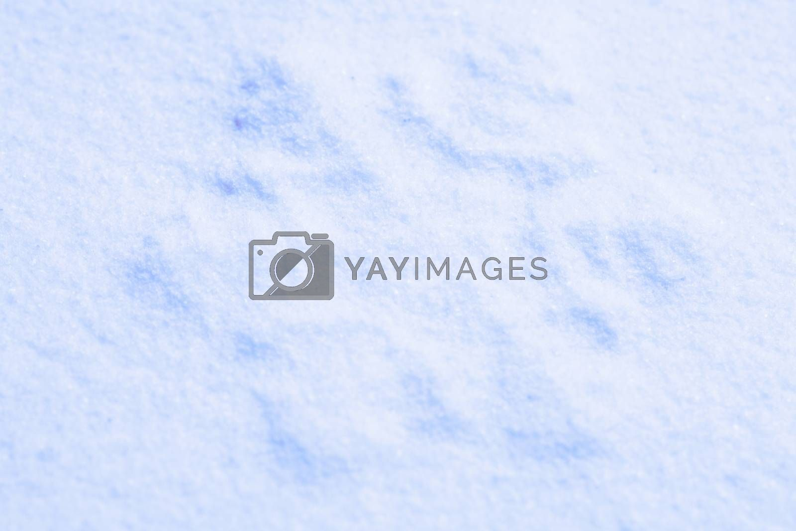 Photo blue snow by anelina