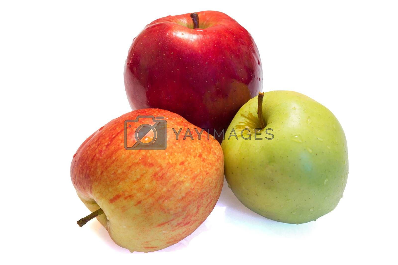 The photo shows an apple on a white background.