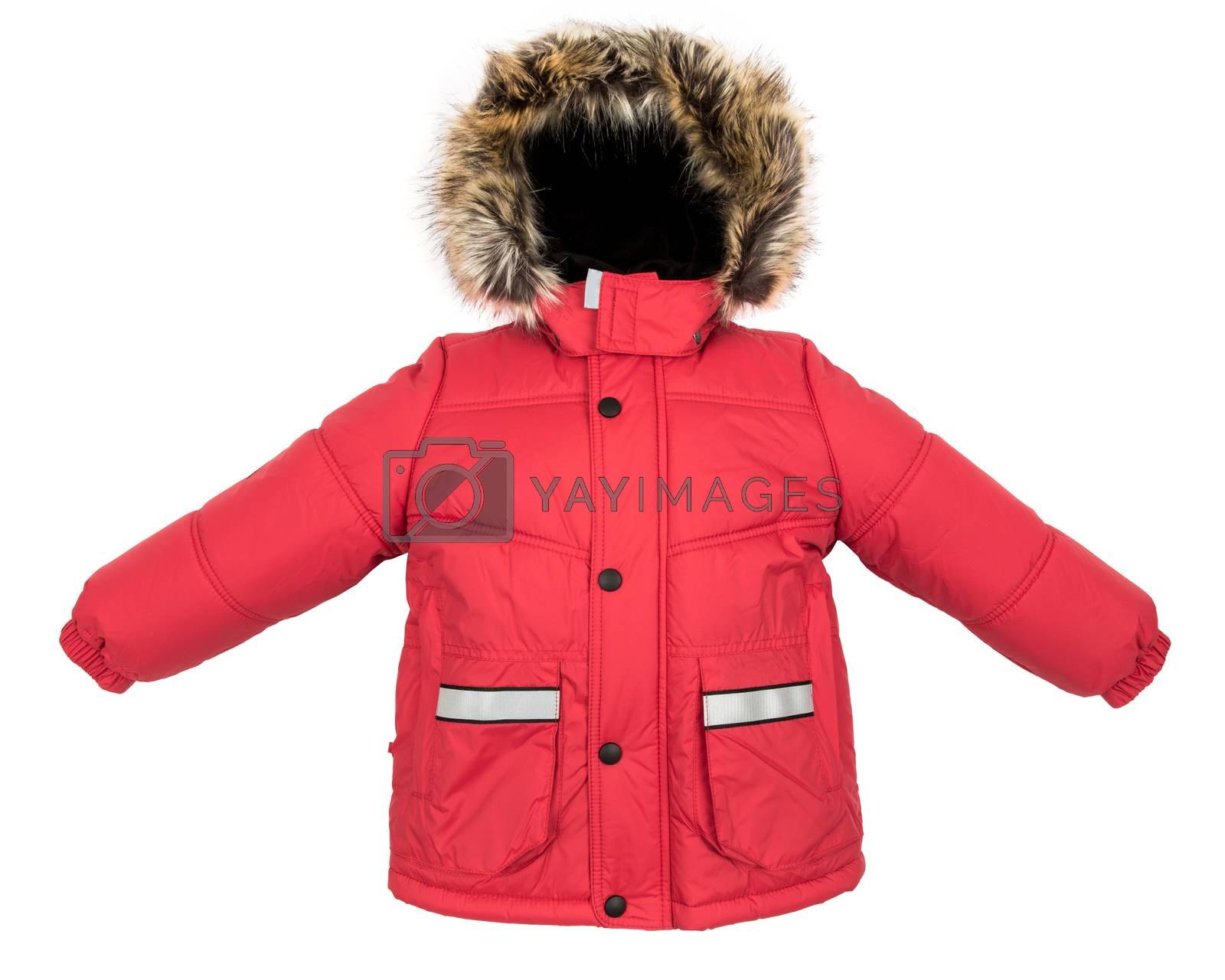Women winter jacket isolated on white background.