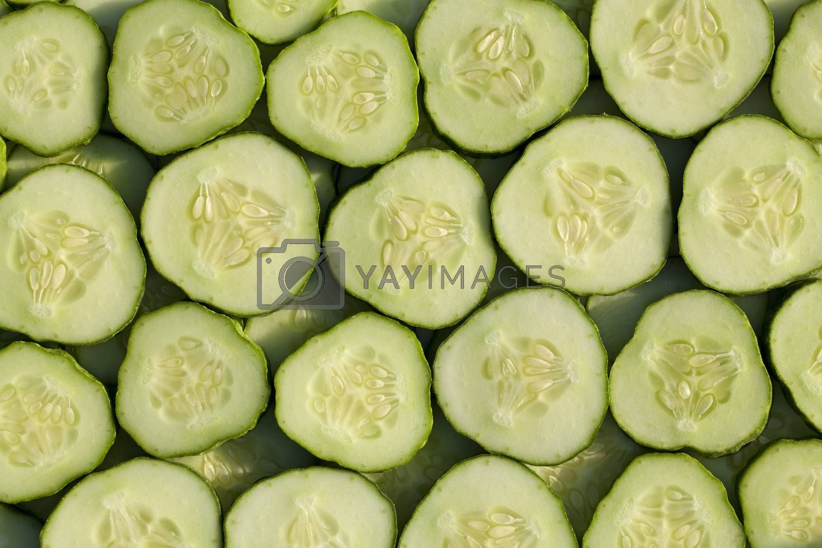 a lot of slice cucumbers as background