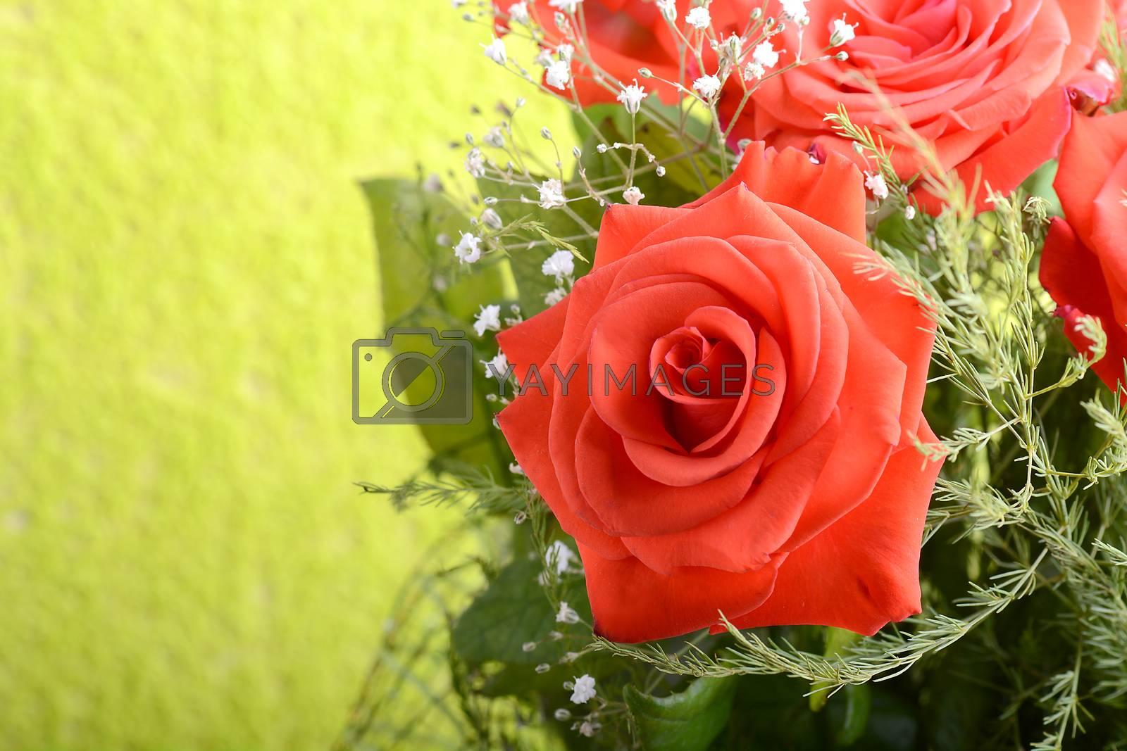 Red roses bouquet, flowers bouquet