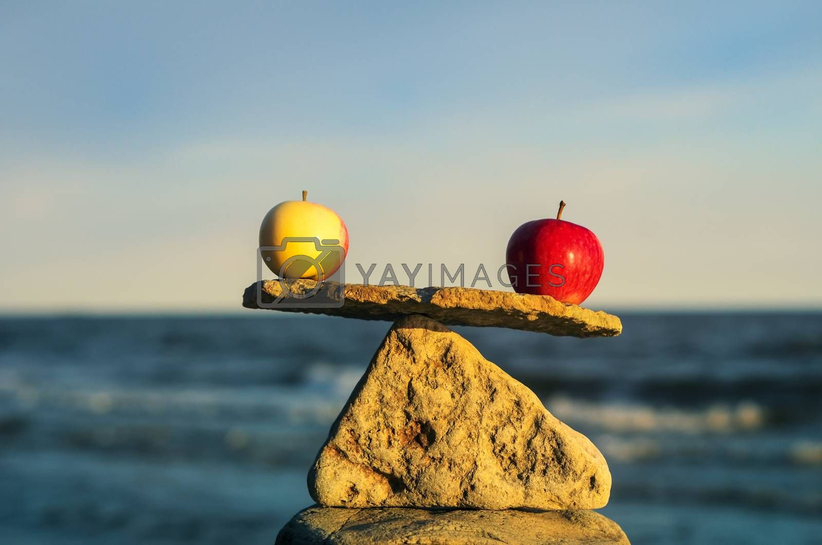 Two apples in balance on the top of stone