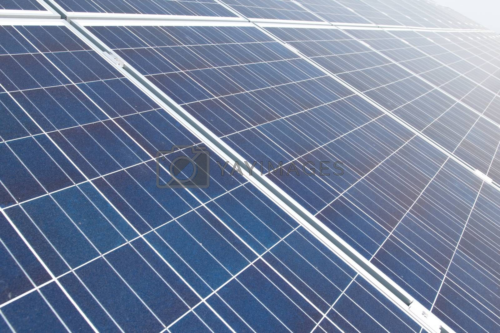 Royalty free image of Solar panels by anderm