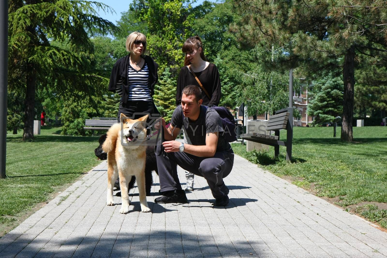 Puppies of Akita Inu and Newfaundlander posing with their owners  in public park