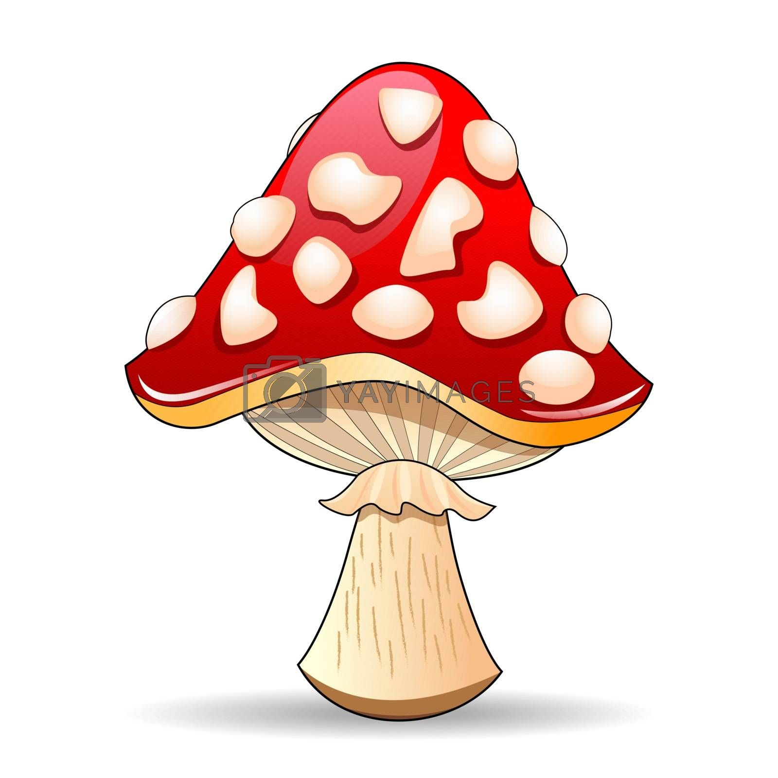 Mushroom amanita. Spotted red mushroom on a white background. Mushroom hat red with white spots.