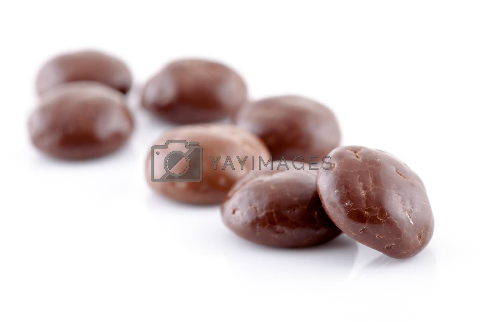 Typical dutch sweets: chocolate pepernoten (ginger nuts) for a celebration at 5 december in the Netherlands over white background
