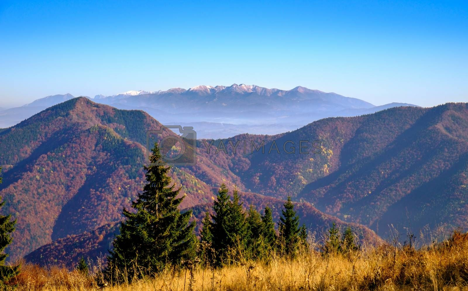 Landscape view of autumn forests and High Tatras mountains, Slovakia