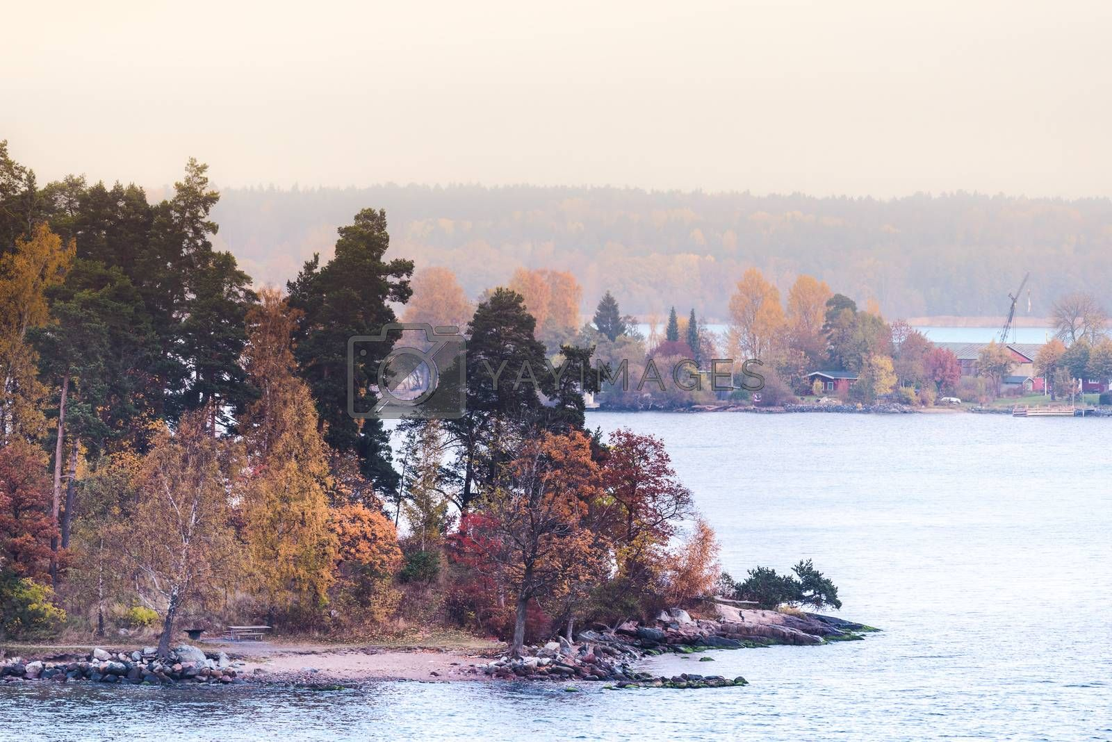 Morning mist along the shores and islands. Swedish sea fjord
