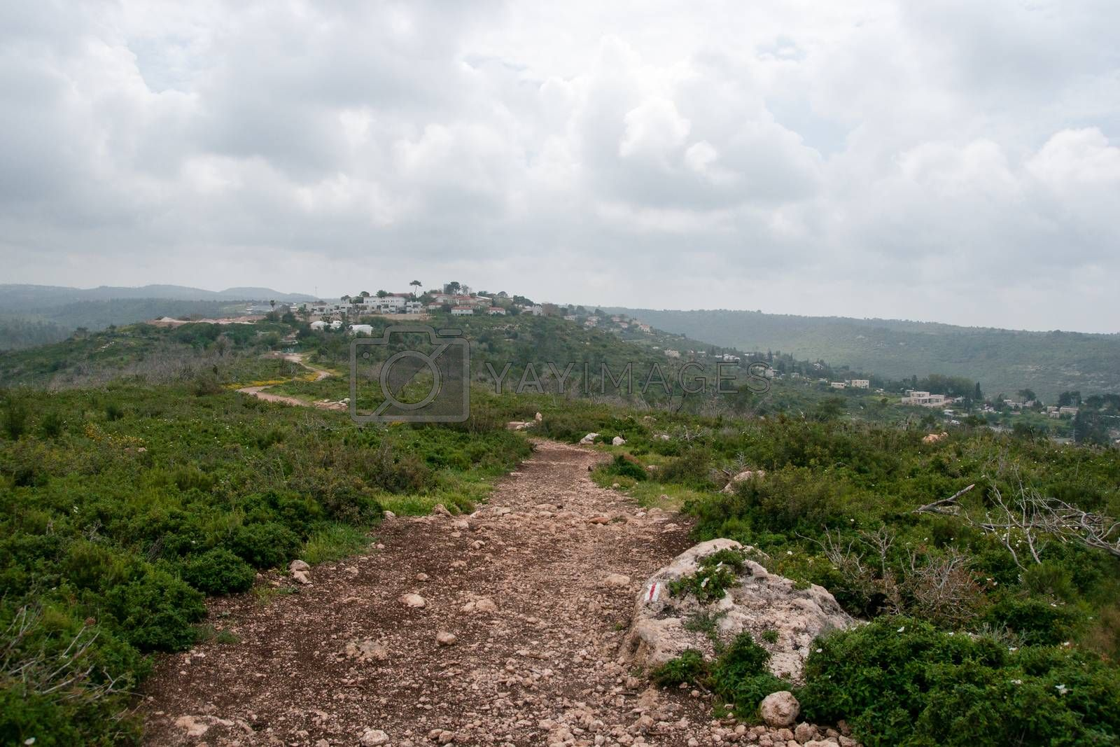 Hiking in Israeli nature landscape with good weather under cloudy sky