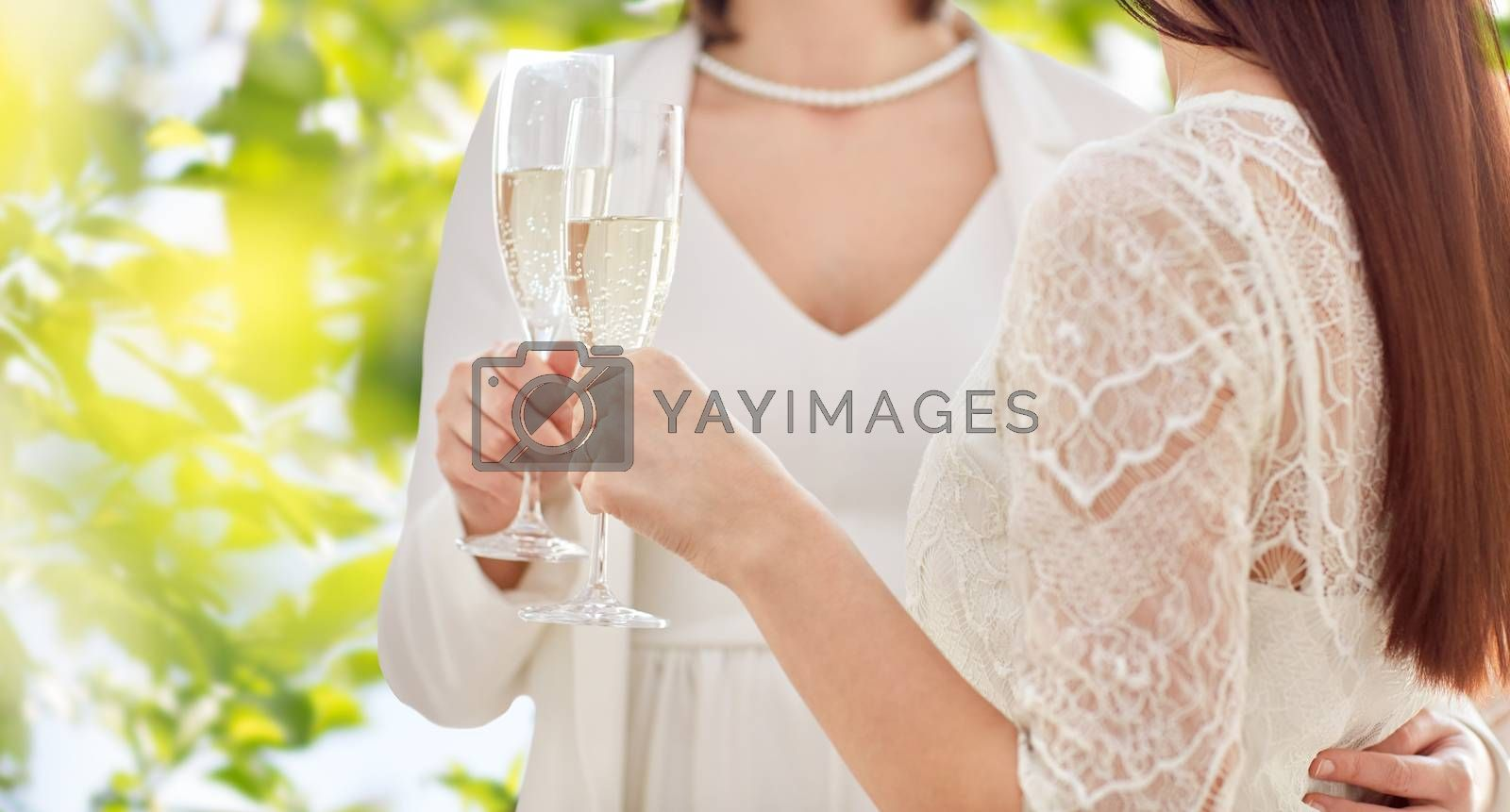 people, homosexuality, same-sex marriage, celebration and love concept - close up of happy married lesbian couple holding and clinking champagne glasses over green tree leavers background