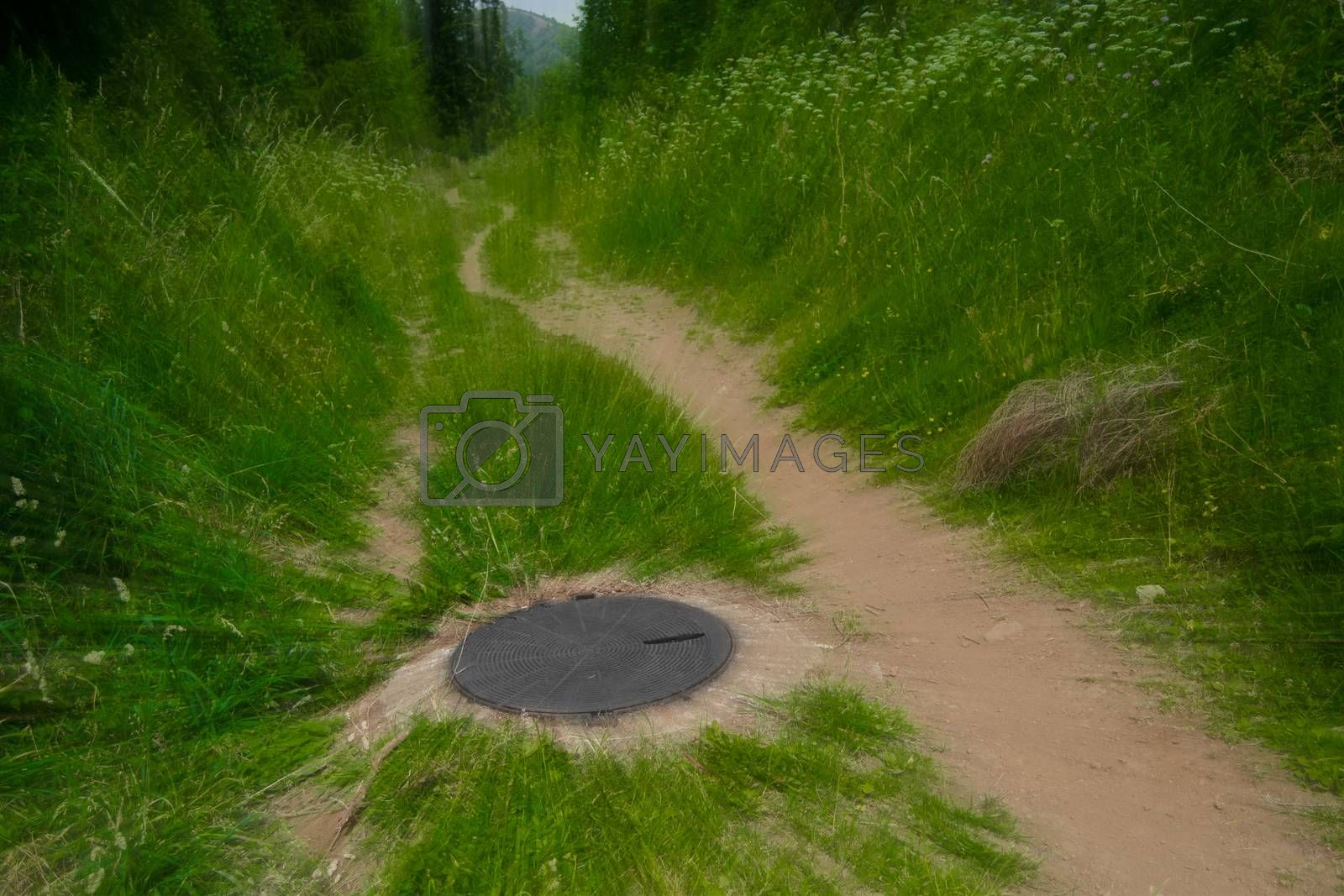 unnatural sewer cover in the middle of forest path