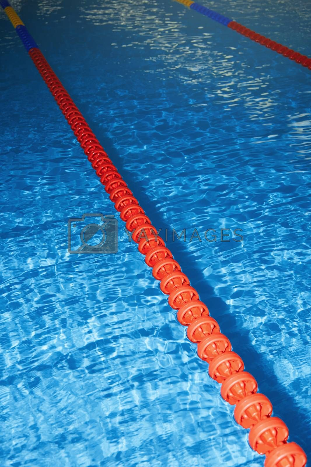 Swimming pool by Novic