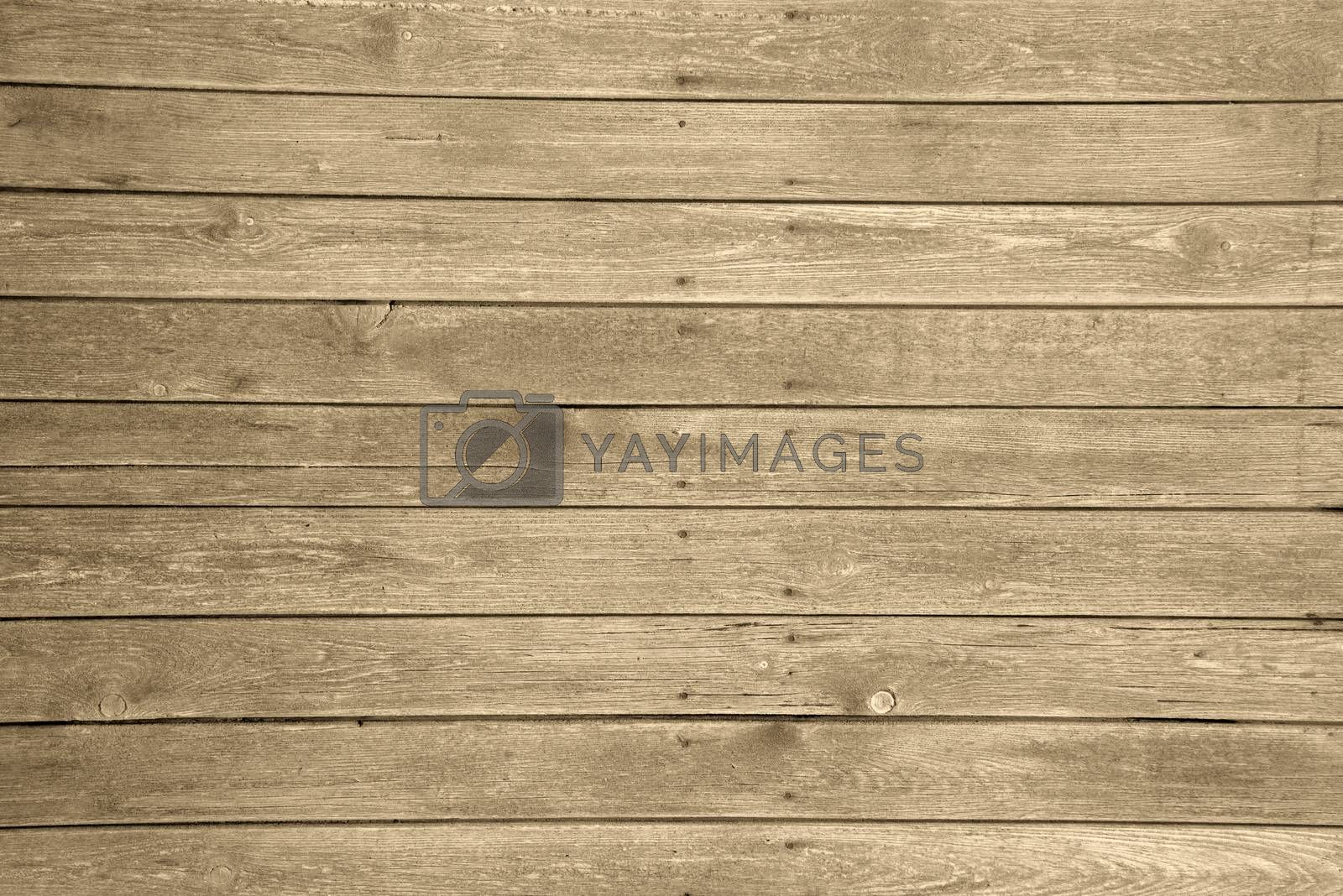 Old wood texture with natural patterns usefull as a background for your web or graphic design.
