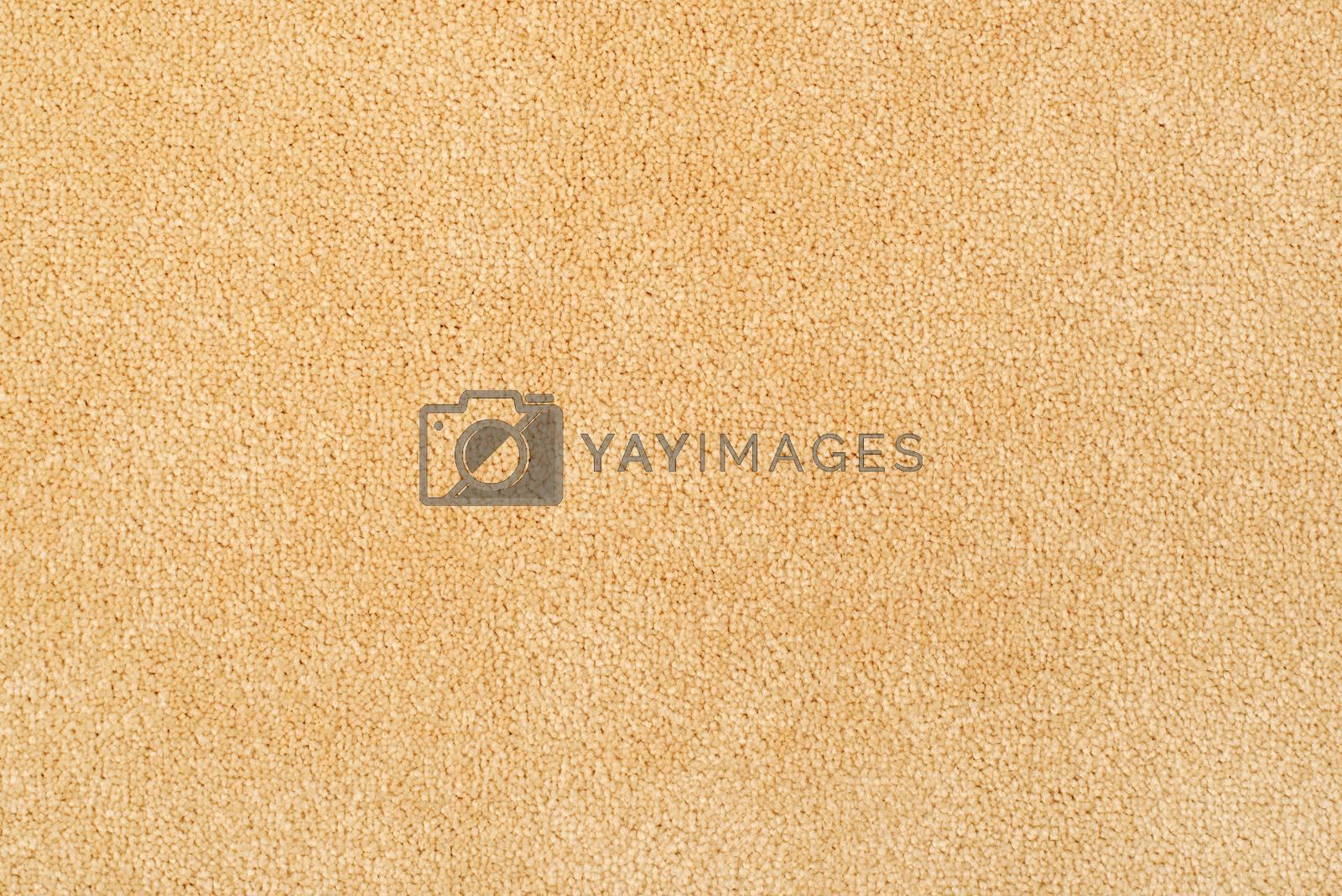 New carpet texture. Bright carpet flooring as seamless background.