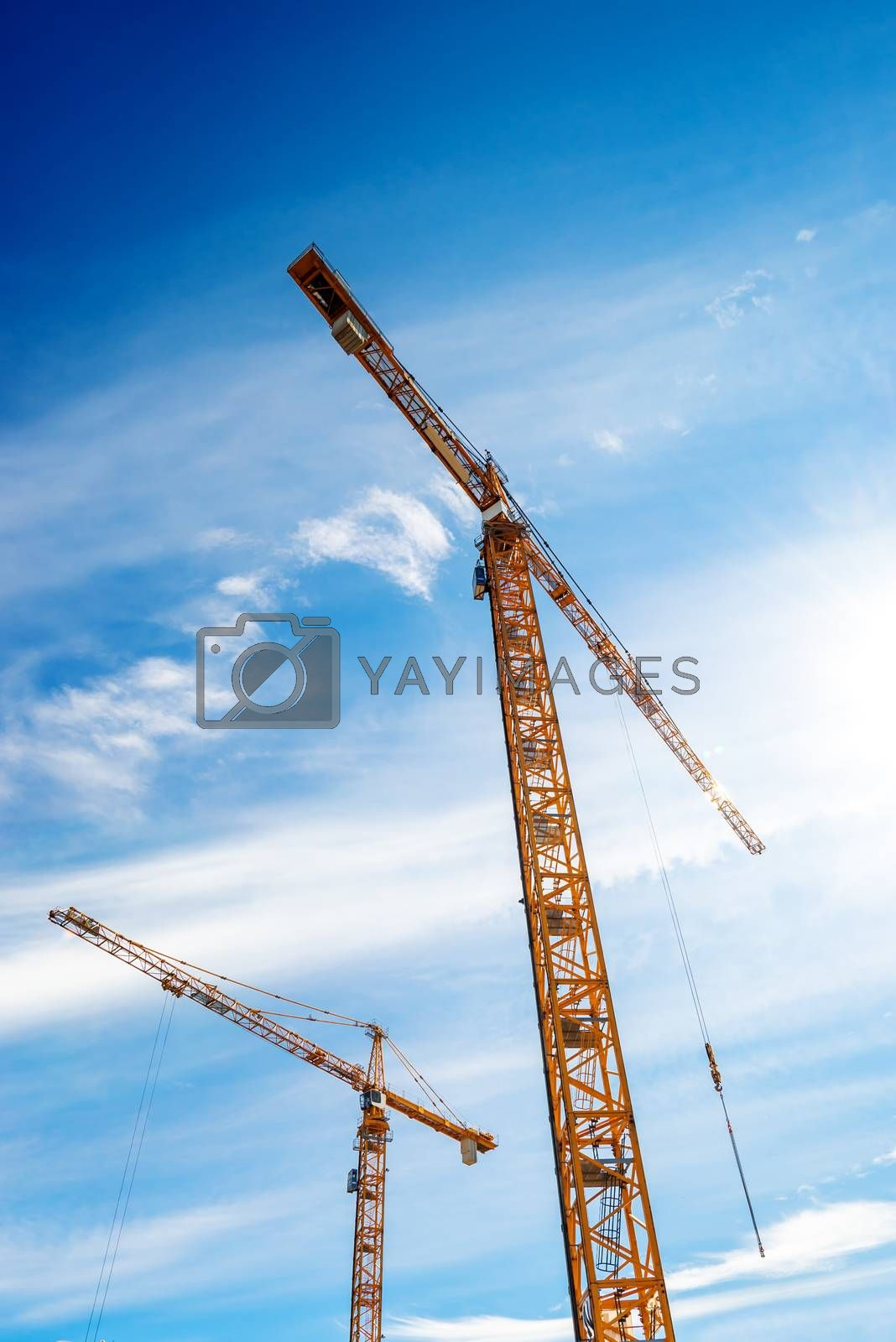 Two Industrial Cranes in Action on Construction Site Against Blue Sky