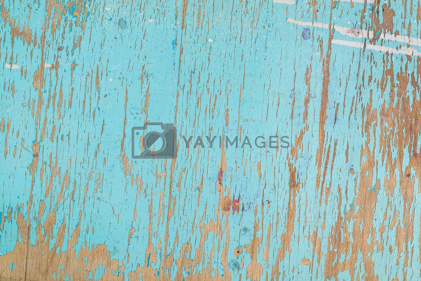 Rustic wooden texture, old wood background with blue peeling paint