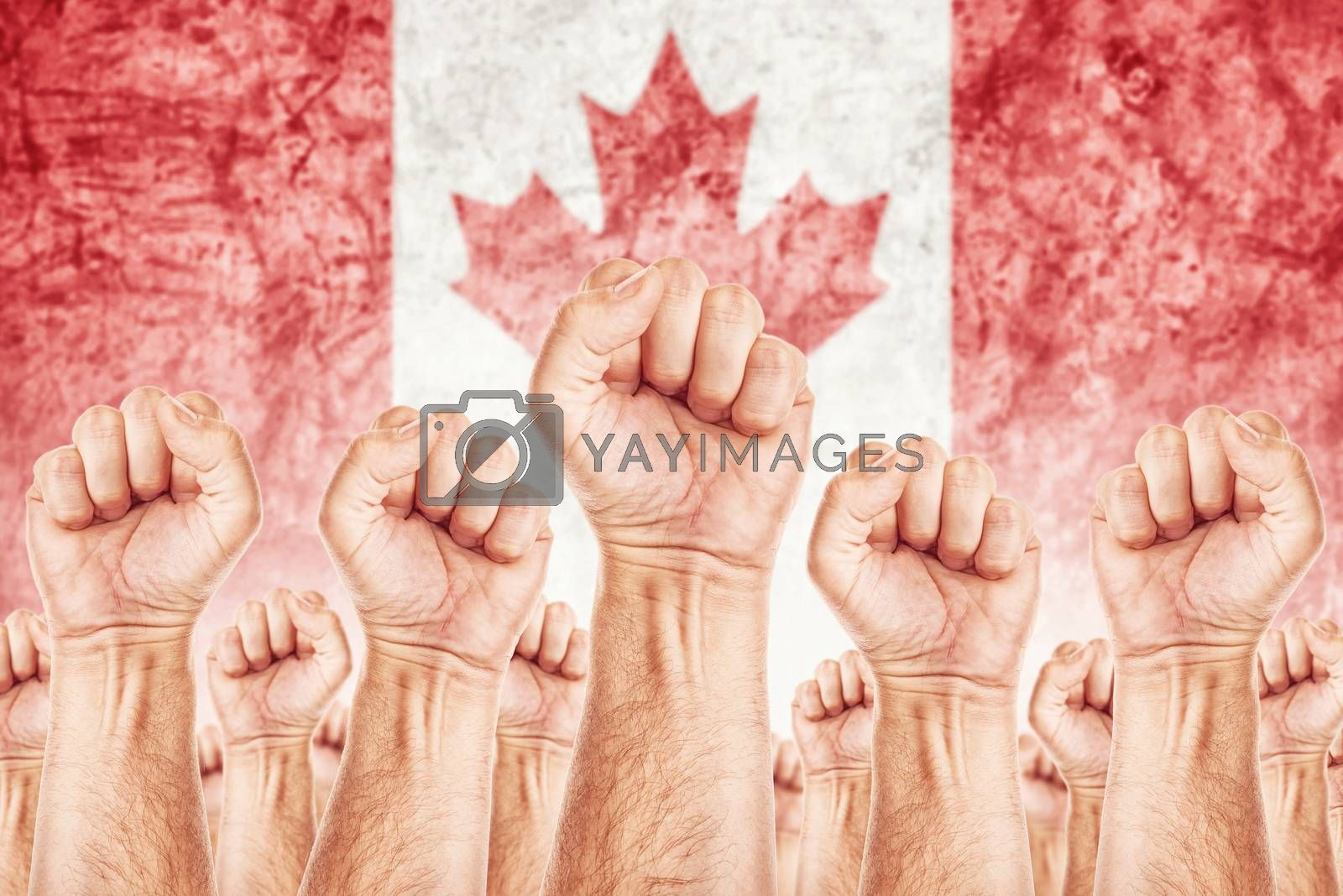 Canada Labour movement, workers union strike concept with male fists raised in the air fighting for their rights, Canadian national flag in out of focus background.