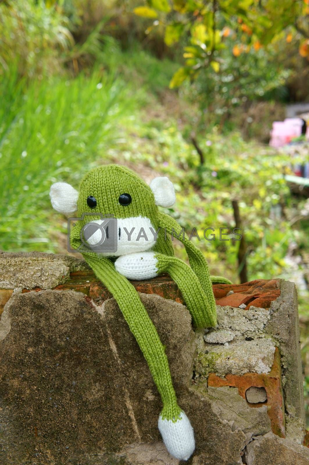 Abstract knitted monkey, symbol of year 2016, handmade toy from yarn, she lie down or sit lonely among nature, happy new year 2016, year of the monkey