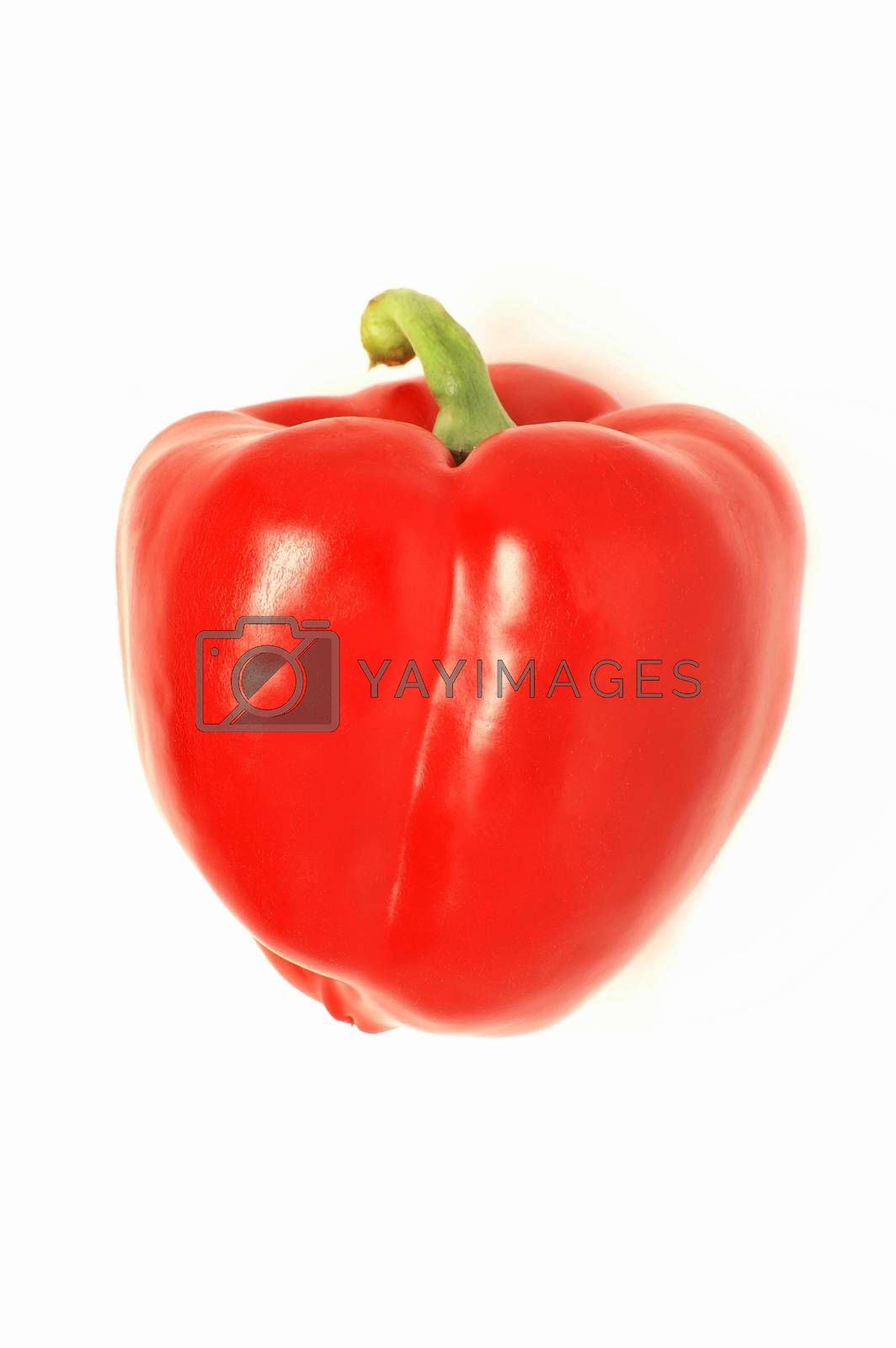 bell pepper isolated on white