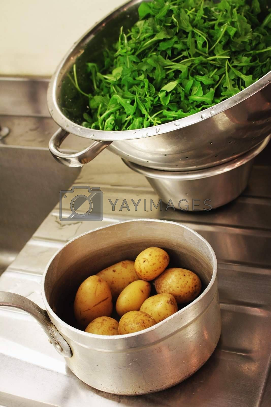 preparing vegetables in kitchen