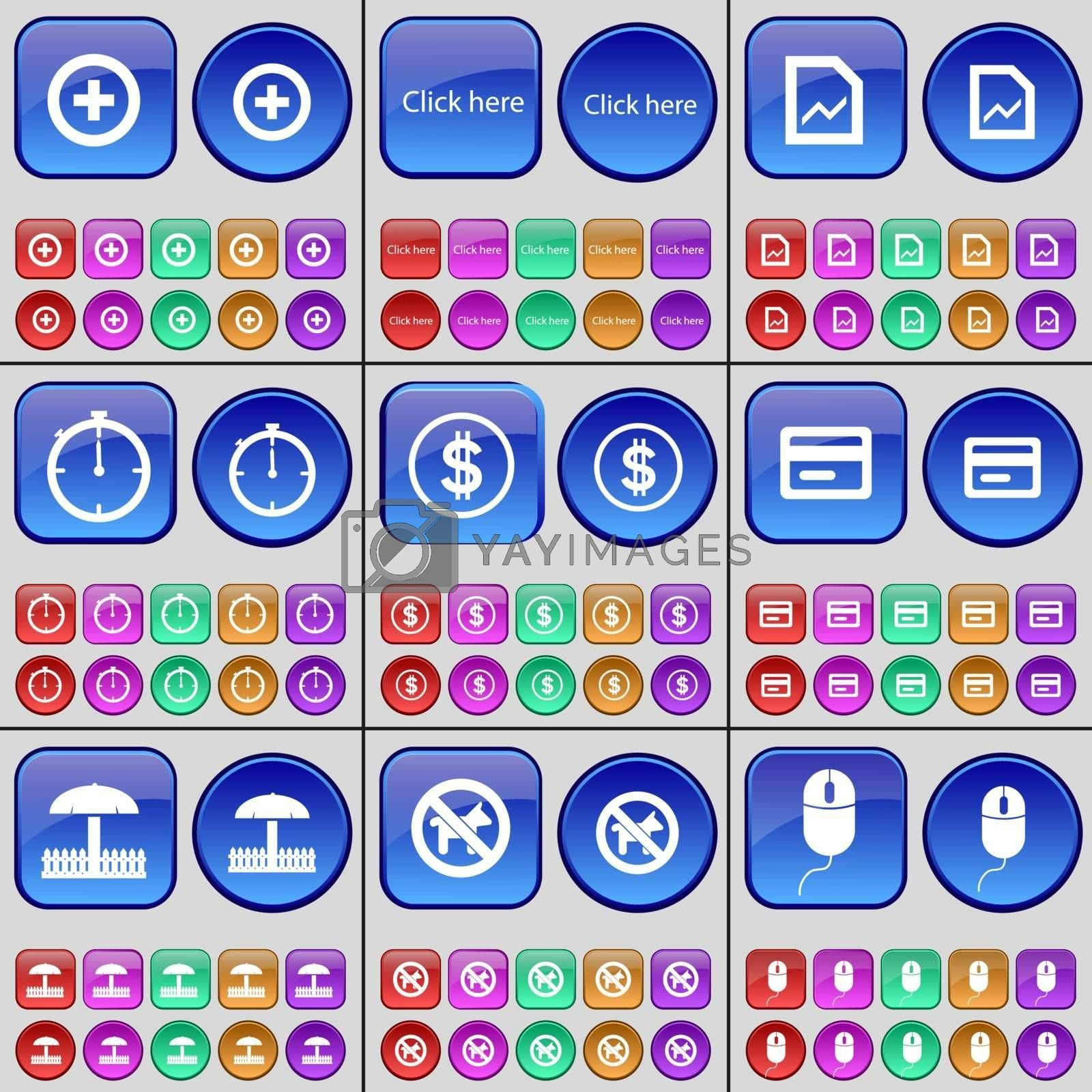 Plus, Clock here, Graph, Stopwatch, Dollar, Credit card, Umbrella, No pets allowed, Mouse. A large set of multi-colored buttons. Vector illustration