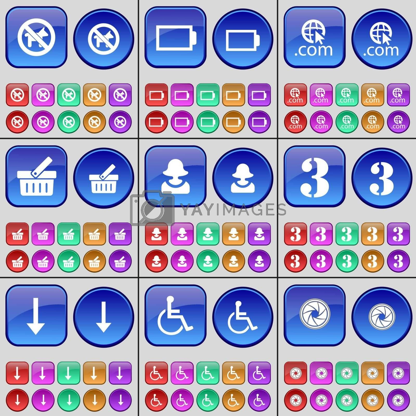 No pets allowed, Battery, Domain, Basket, Avatar, Three, Arrow down, Disabled person, Lens. A large set of multi-colored buttons. Vector illustration