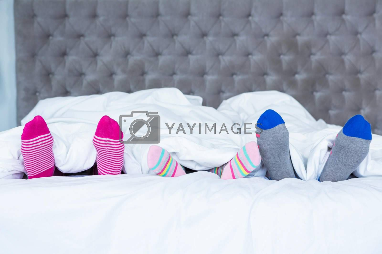 Family feet with socks sticking out from the blanket