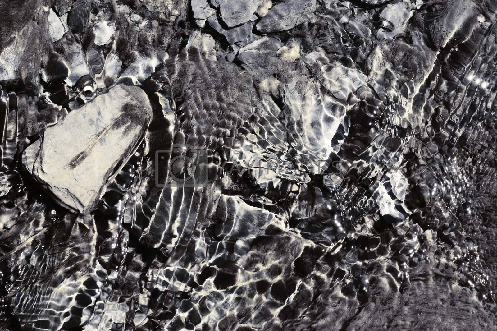 A stream with sediments, water plants and stones in clear sparkling water.