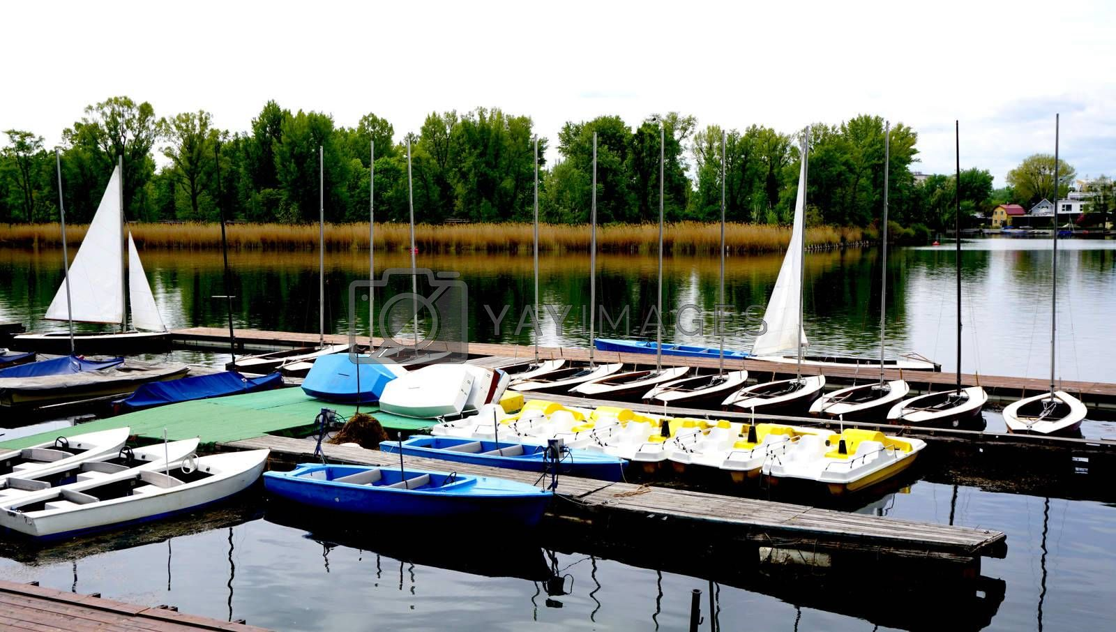 Royalty free image of Boats in Danube  River by polarbearstudio