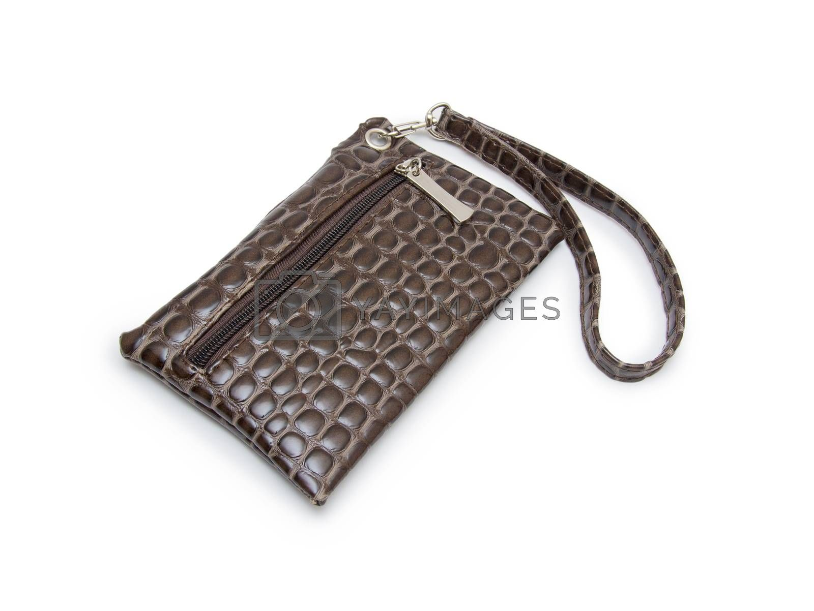 Royalty free image of wallet or purse woman  on a white background by cocoo