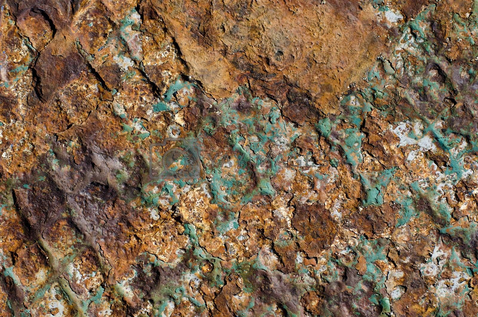 Royalty free image of Old rusty metal background with peeling paint by alis_photo