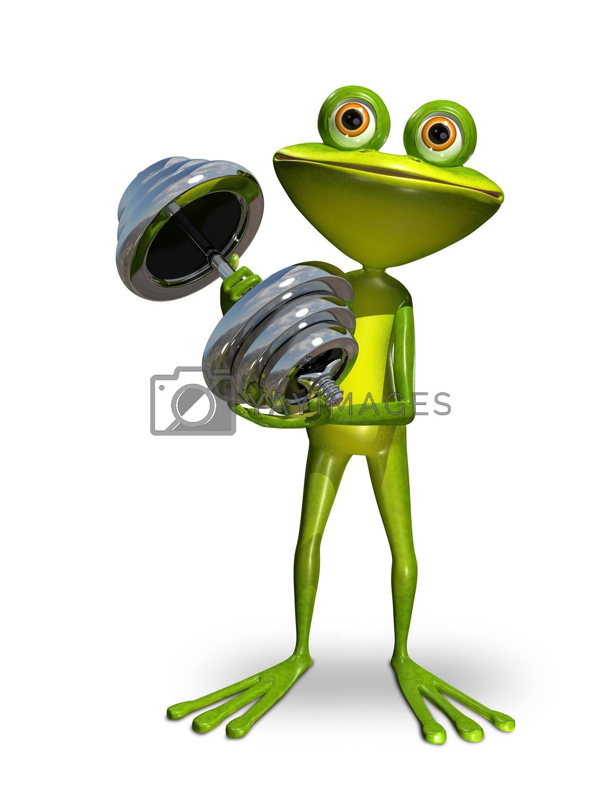 Illustration a frog doing gymnastics sport dumbbells