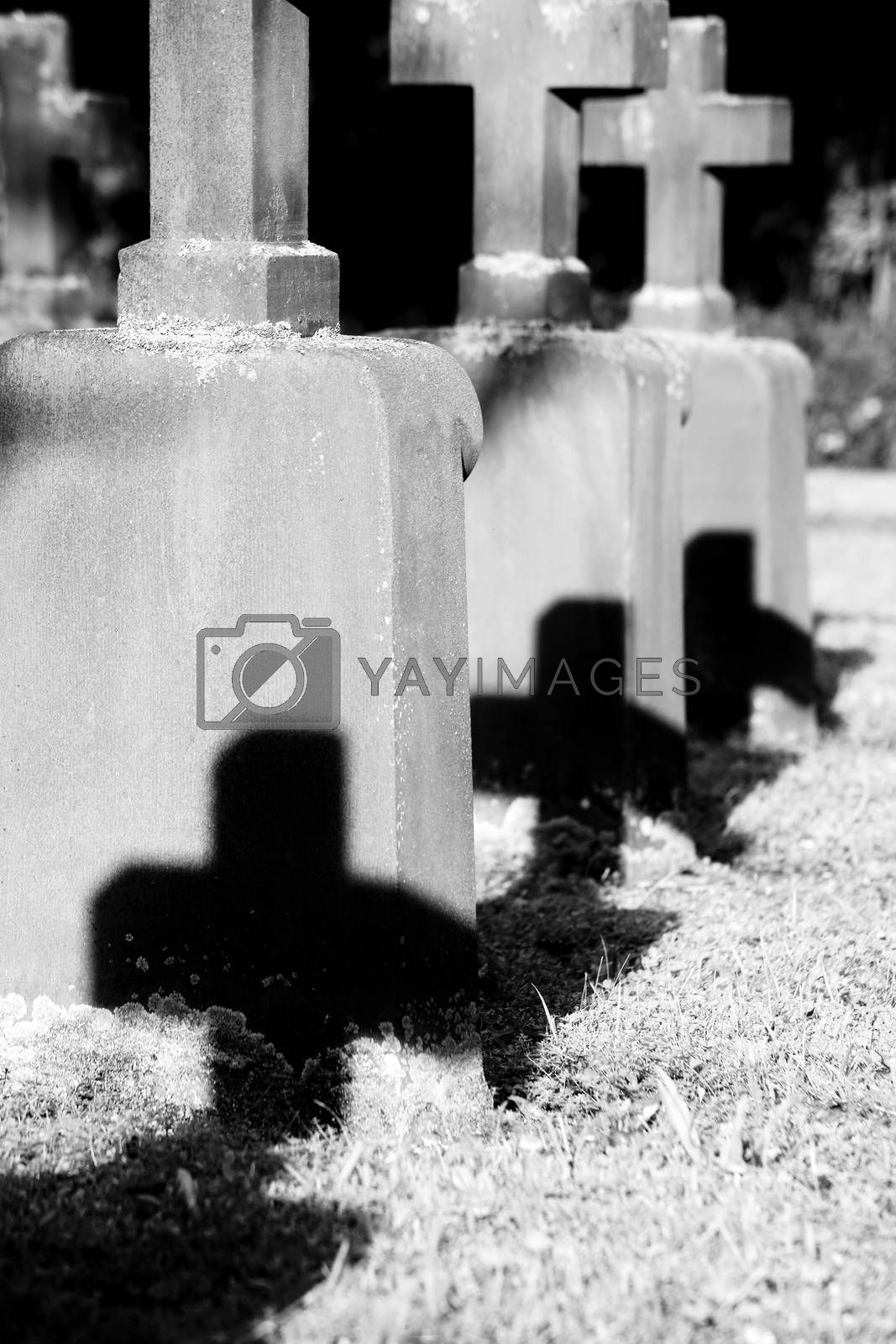 Cemetery crosses of a mass grave in the sunlight throwing shadows.