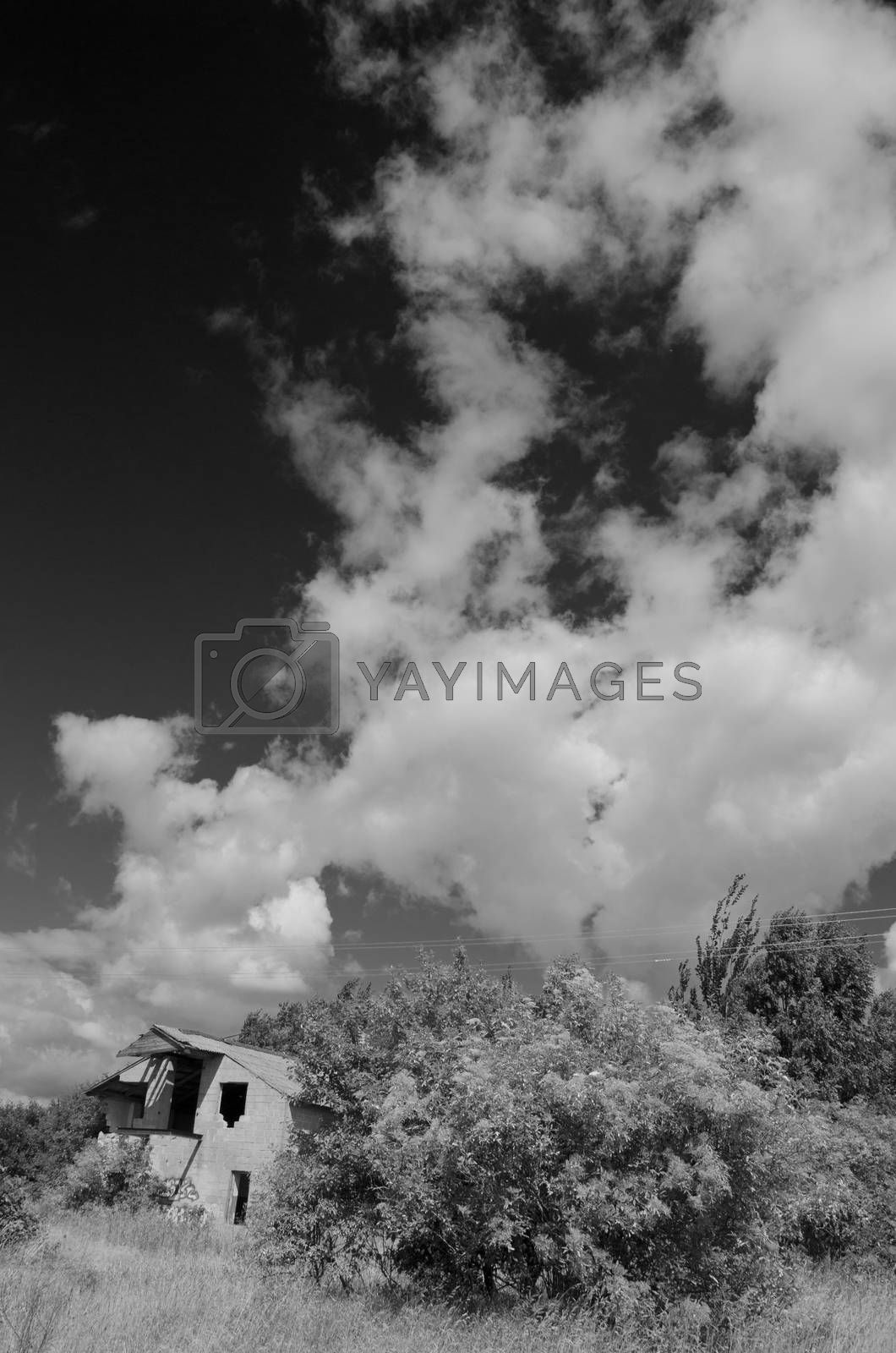 Royalty free image of Rural landscape with clouds and desolate house by alis_photo