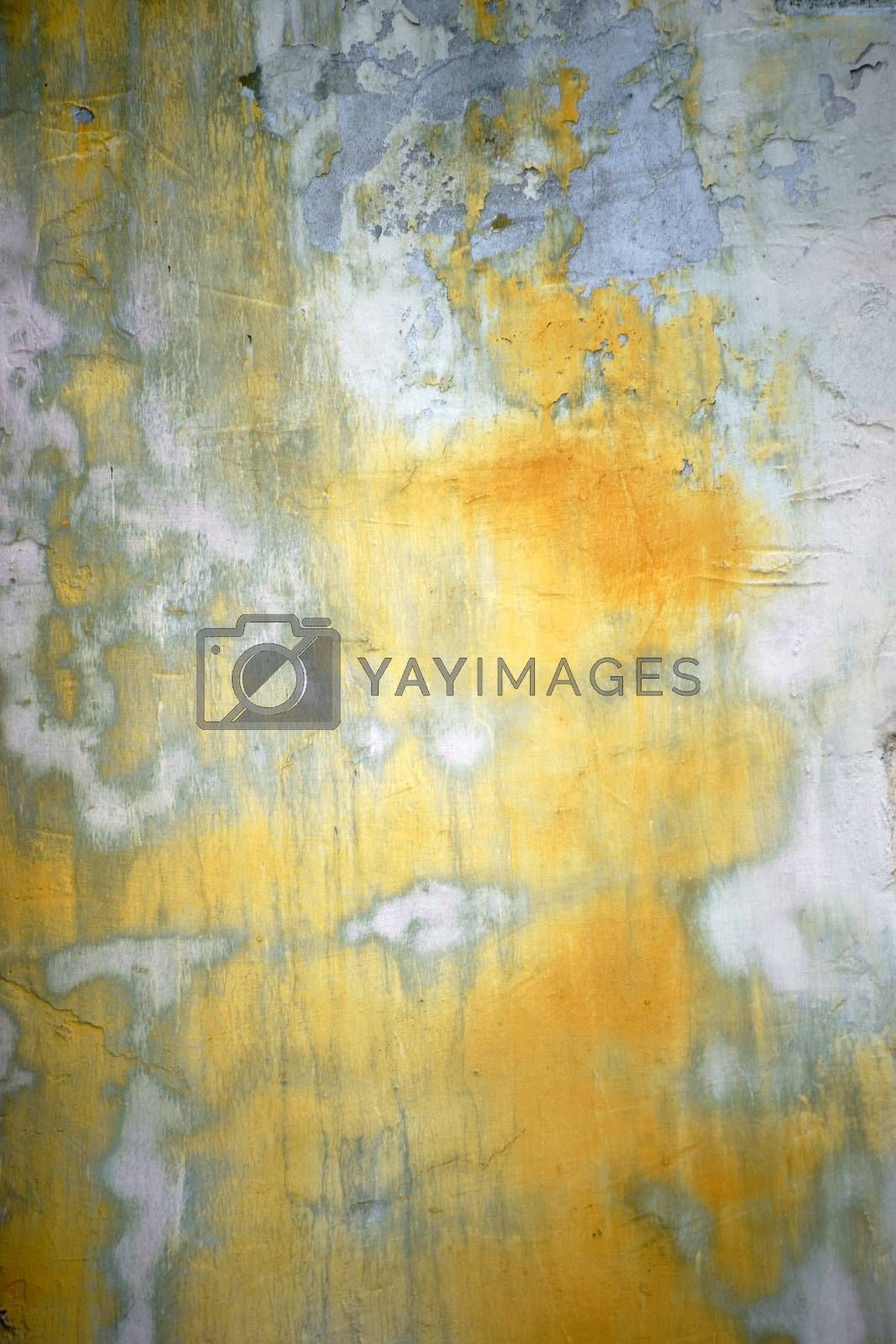 Royalty free image of Polished wall by ginton