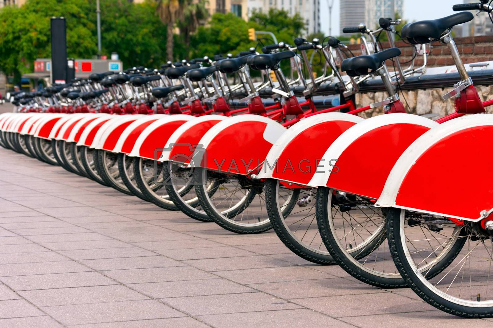 Long row of red and white bicycles (public bikes) near the harbor in Ronda Litoral, Barcelona - Spain