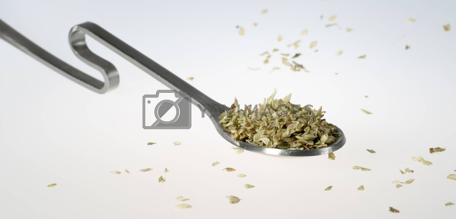Dried Oregano on Tablespoon close up.