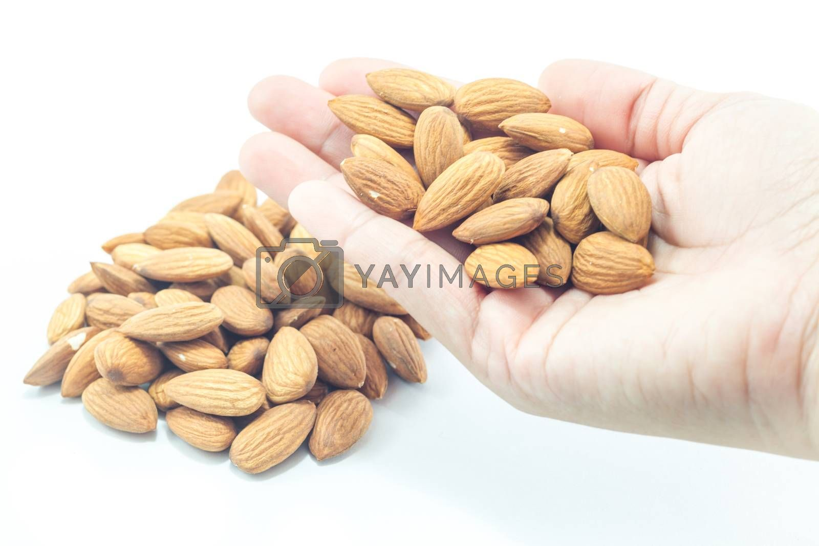 Hand on almond grain isolated on white background, stock photo