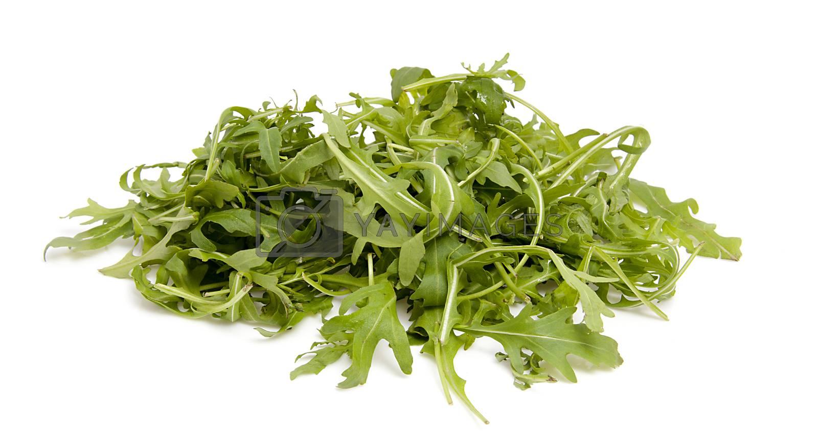 Pile of fresh Ruccola lettuce over white background
